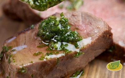 Carne Madurada con Chimichurri